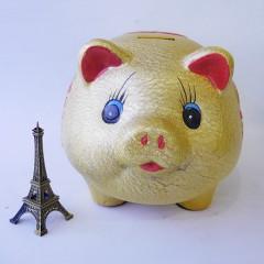 10号冬瓜猪