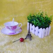 贵族咖啡杯 (茶花)