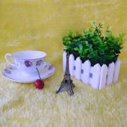 贵族咖啡杯 (约定)