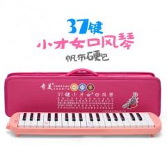 奇美 37键口风琴