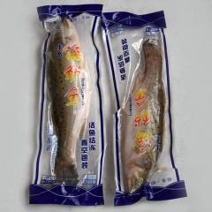 洋剑活冻海鲈鱼