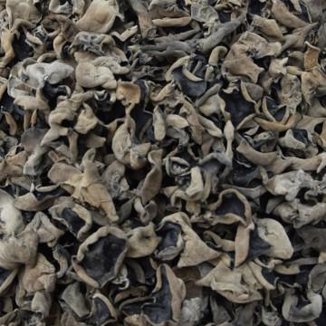 黑山精品1.5木耳